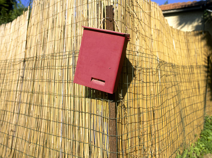Postal Box Photograph - Mail Box On Bamboo Fence by Daniel Blatt