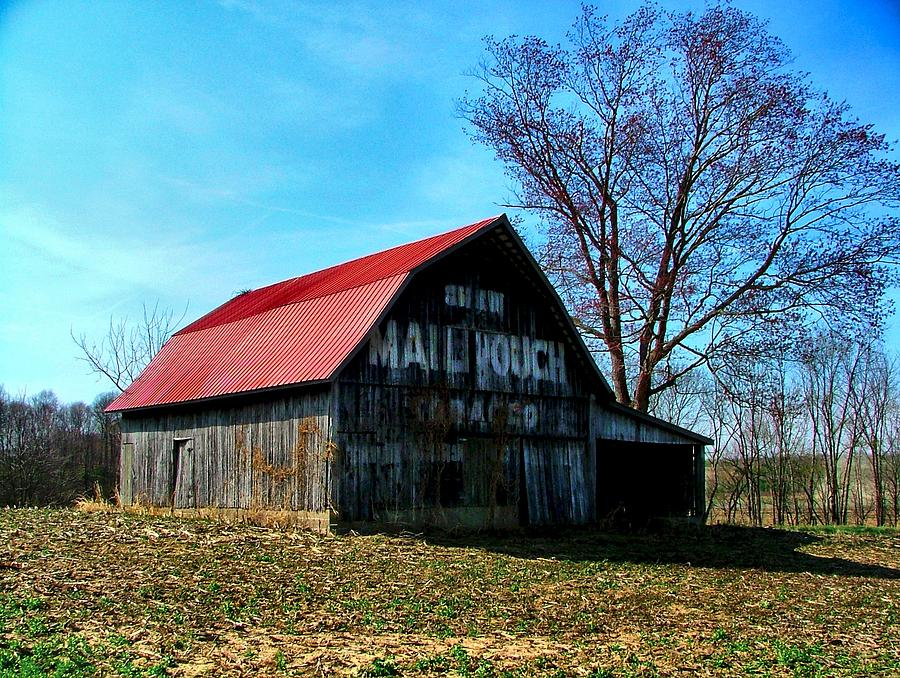Barn Ads Photograph - Mail Pouch Ad by Julie Dant