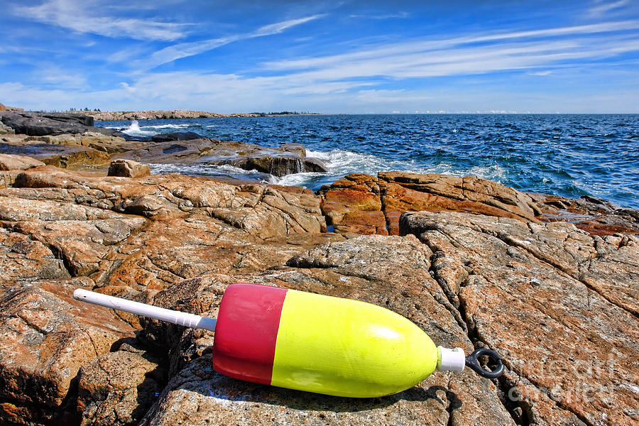 Buoy Photograph - Maine Coast by Olivier Le Queinec