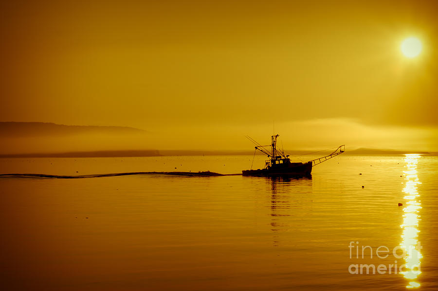 Maine Sunrise Photograph