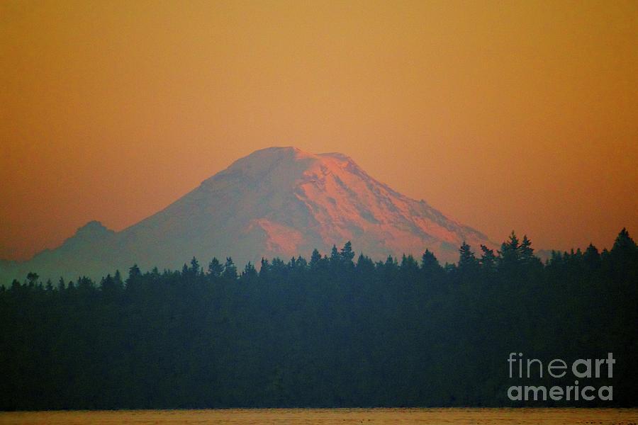 Mt. Rainier Photograph - Majestic Rainier by Terri Thompson