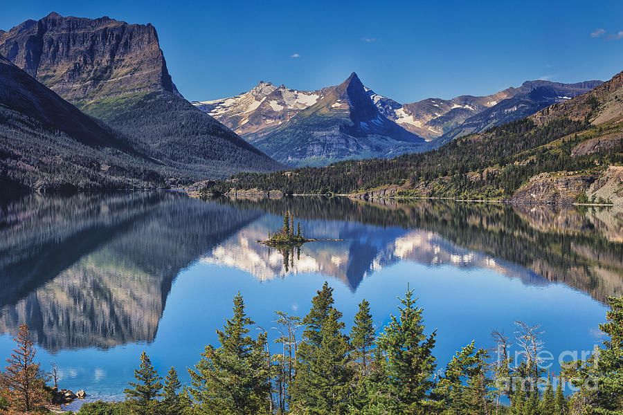 Majestic Reflection by Sophie Doell