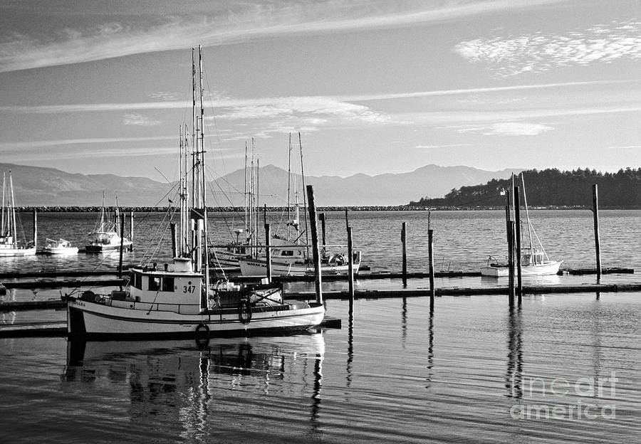 Seascape Photograph - Makah Tribal Trawlers  by Earl Johnson