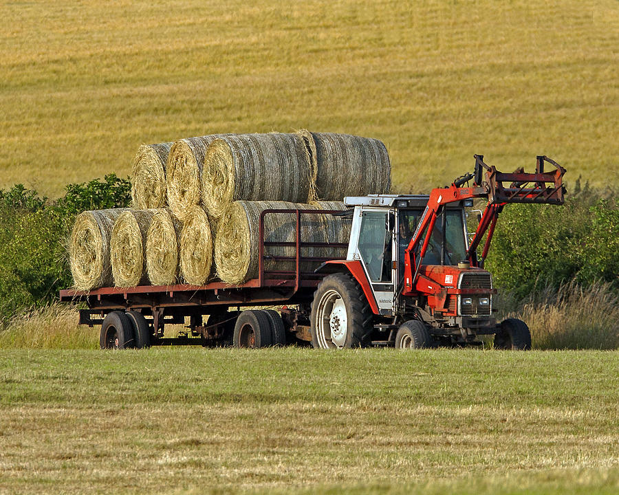 Hay Photograph - Make Hay When Sun Shines by Paul Scoullar