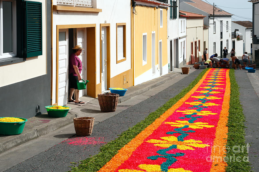 Portugal Photograph - Making Flower Carpets by Gaspar Avila