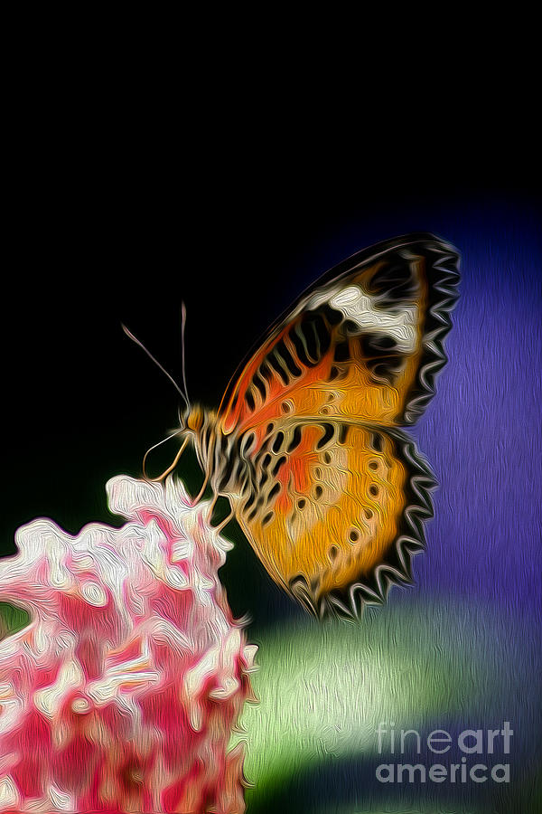 Butterfly Digital Art - Malay Lacewing Butterfly I by Kenneth Montgomery