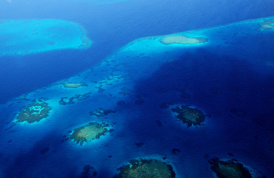 Aerial Photograph - Maldivian Reefs. Aerial Journey Over Maldivian Archipelago by Jenny Rainbow