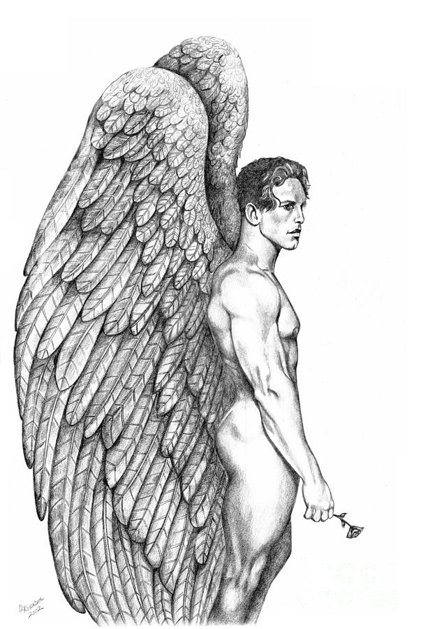 Male Angel Drawing - Male Angel With Rose by Dawn Rosendahl