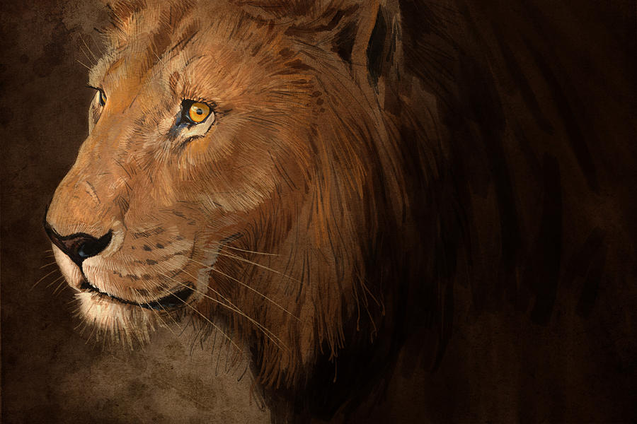 Lion Digital Art - Male Lion by Aaron Blaise