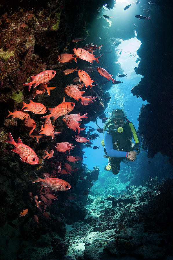 Male Scuba Diver In Cave Photograph by Georgette Douwma