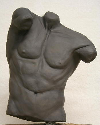 Figure Sculpture - Male Torso by Monika Degan