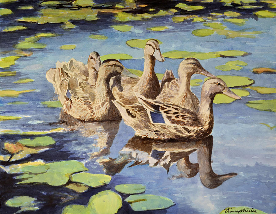 Pond Painting - Mallards by Thomas Stratton