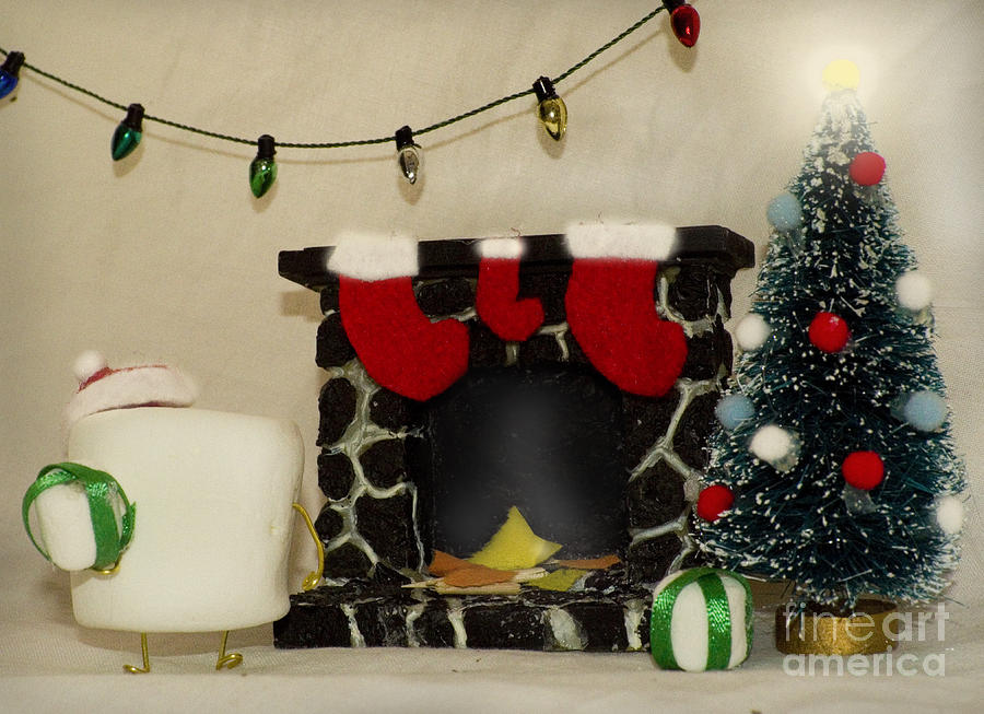 Christmas Photograph - Mallow Christmas by Heather Applegate