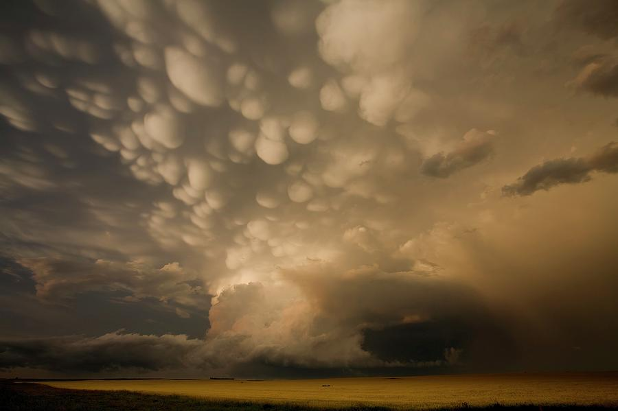 Cloud Photograph - Mammatus Clouds Over Fields by Roger Hill/science Photo Library