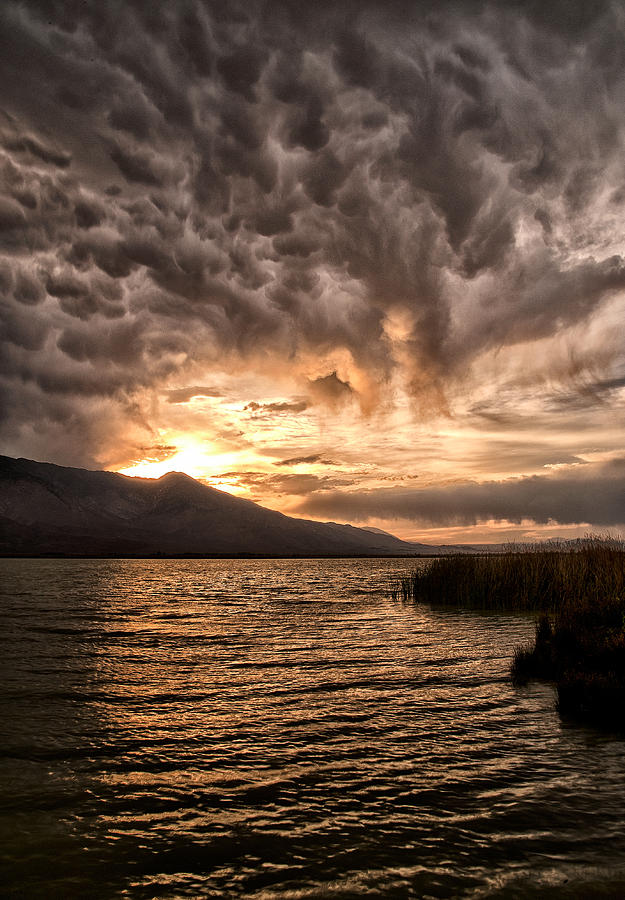 Clouds Photograph - Mammatus Sunset by Cat Connor