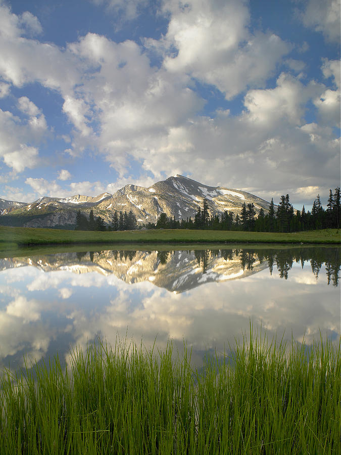 Mammoth Peak And Clouds Reflected Photograph by Tim Fitzharris
