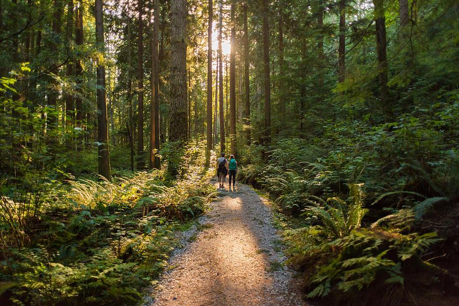 Man and Woman Hikers Admiring Sunbeams Streaming Through Trees Photograph by PamelaJoeMcFarlane