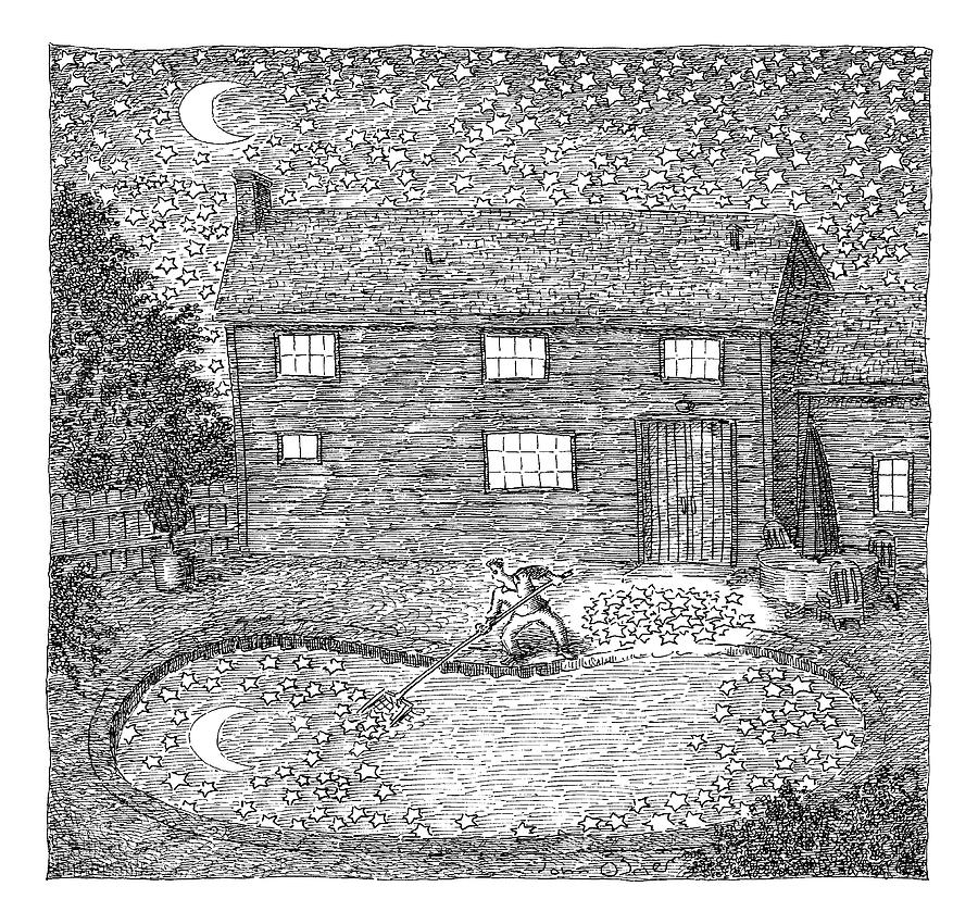 Man Fishes Stars Out Of His Pool At Nighttime Drawing by John OBrien