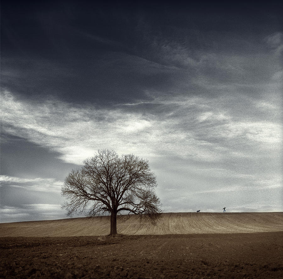 Horizon Photograph - Man Hounded By Dog by David Heger