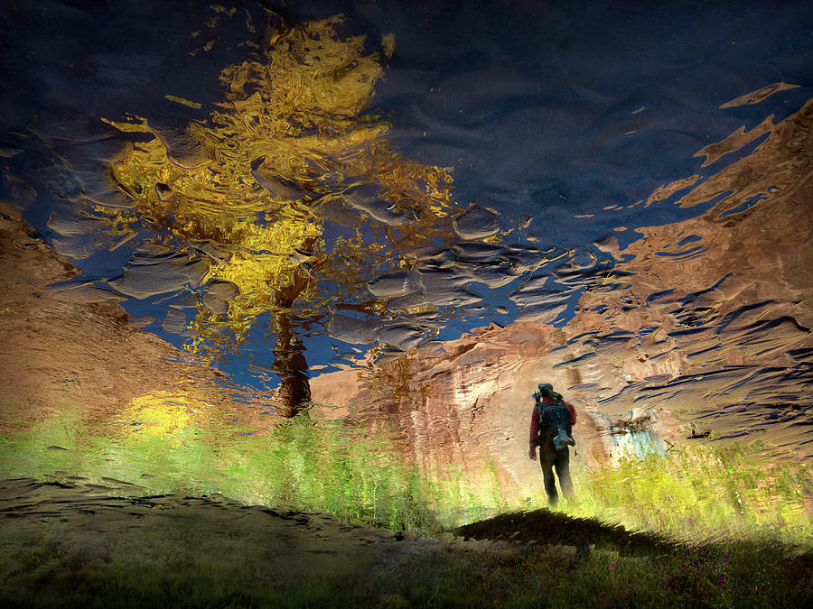 Puddle Photograph - Man In Nature - Into The Canyon by Shenshen Dou