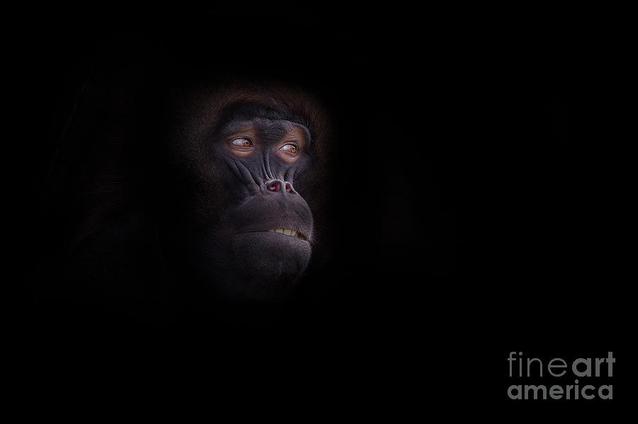 Africa Photograph - Man In The Mask by Ashley Vincent