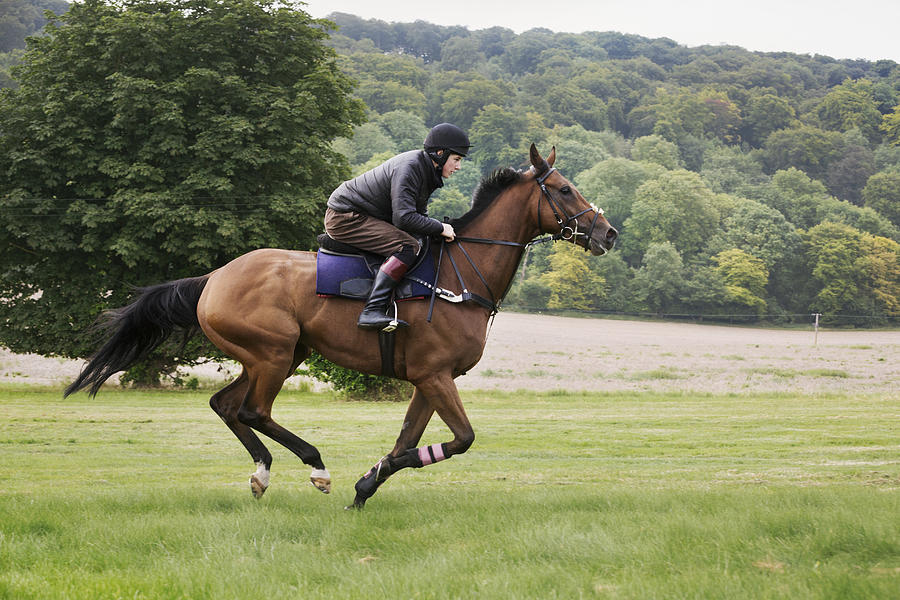 Man on a bay horse galloping across grass. Photograph by Mint Images