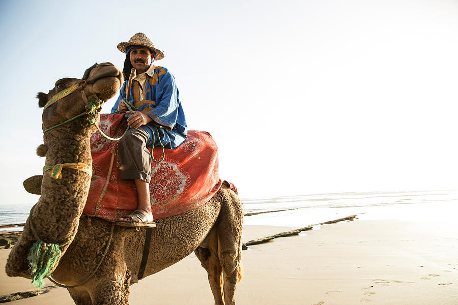 Man On Camel On Beach, Taghazout Photograph by Tim E White