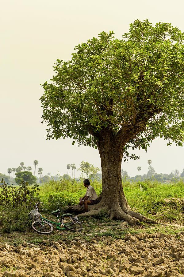 Man Resting Below Tree In Green Field Photograph by Merten Snijders