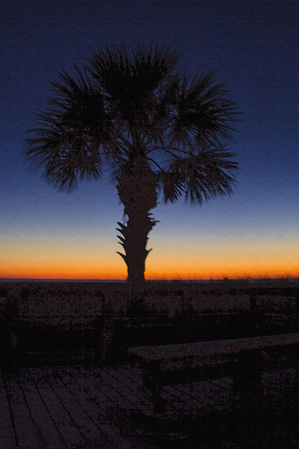 Manasota Keys Sunset by Ric Potvin