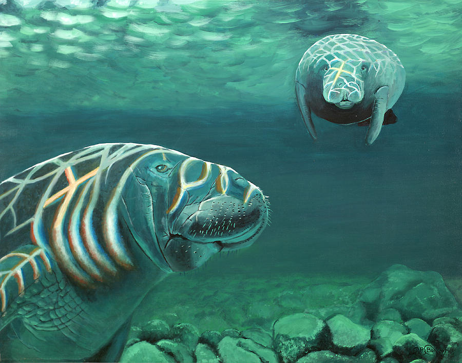 Wildlife Painting - Manatee Heaven by Peter Bonk