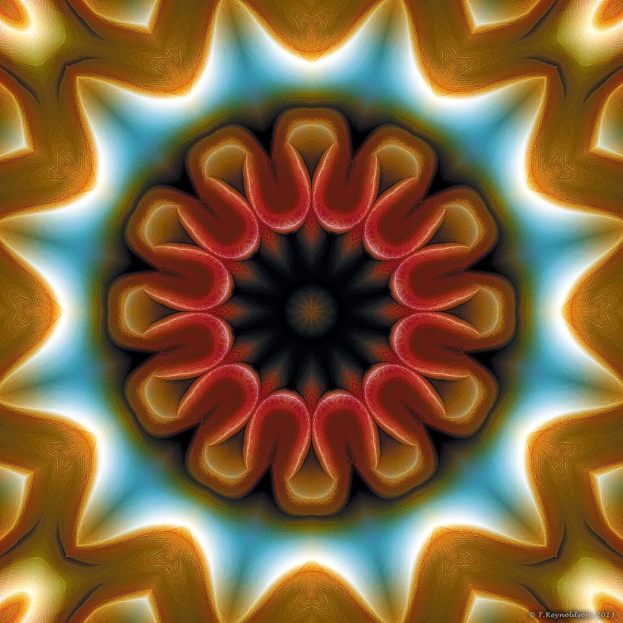 Sacred Geometry Digital Art - Mandala 100 by Terry Reynoldson