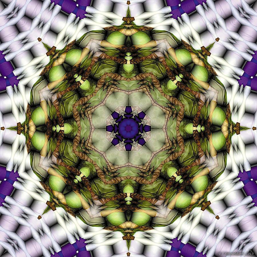 Sacred Geometry Digital Art - Mandala 21 by Terry Reynoldson