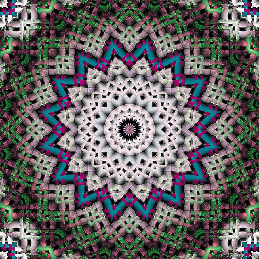 Kaleidoscope Patterns Digital Art - Mandala 37 by Terry Reynoldson