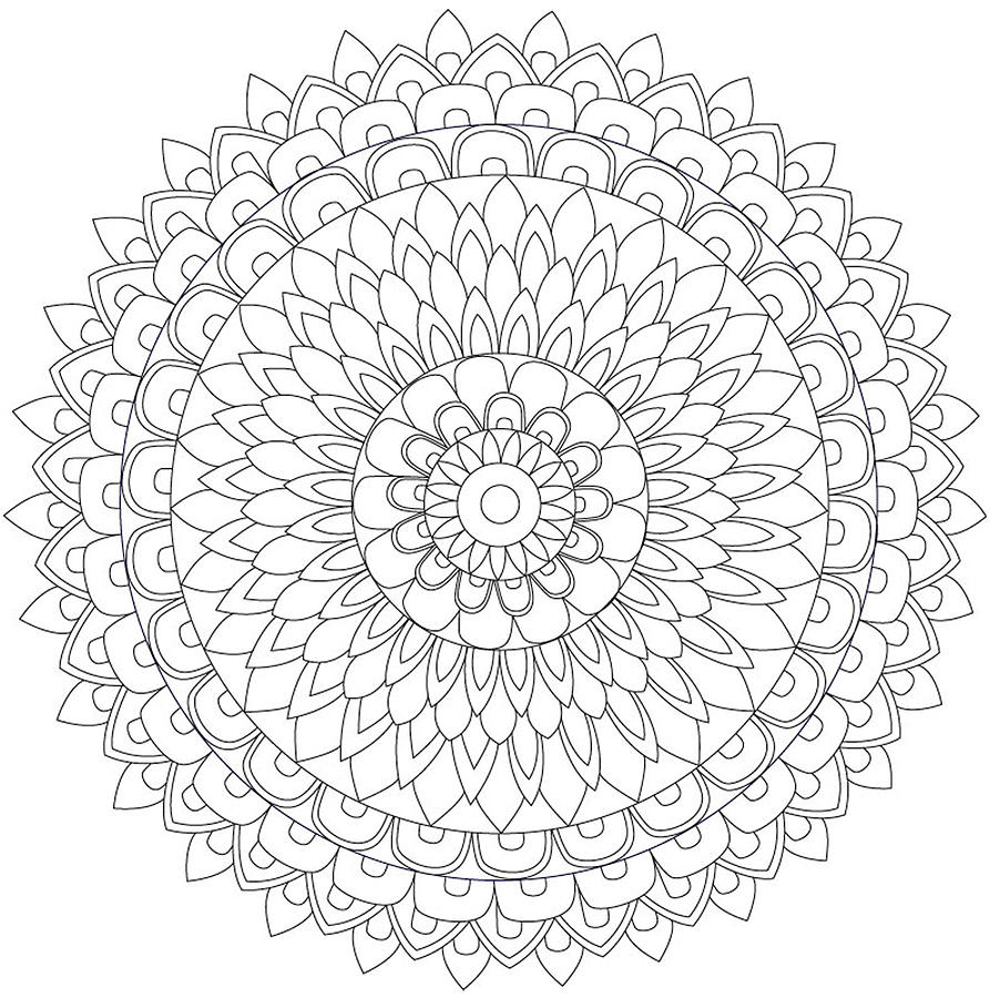 Meadowlark and Goldenrod nebraska state bird flower likewise flower mandala coloring sheets photo 554435 also  moreover Hawaiian 2BFlower 2BColoring 2BPages 717804 in addition  moreover thumbs malbuch fur erwachsene mandalas 22849 in addition 1326079 2a image 620 besides botanicals zendoodle drawing by katahrens d5r8k6i in addition mandala fleur avec feuilles furthermore  moreover . on difficult adult coloring pages free flower printables