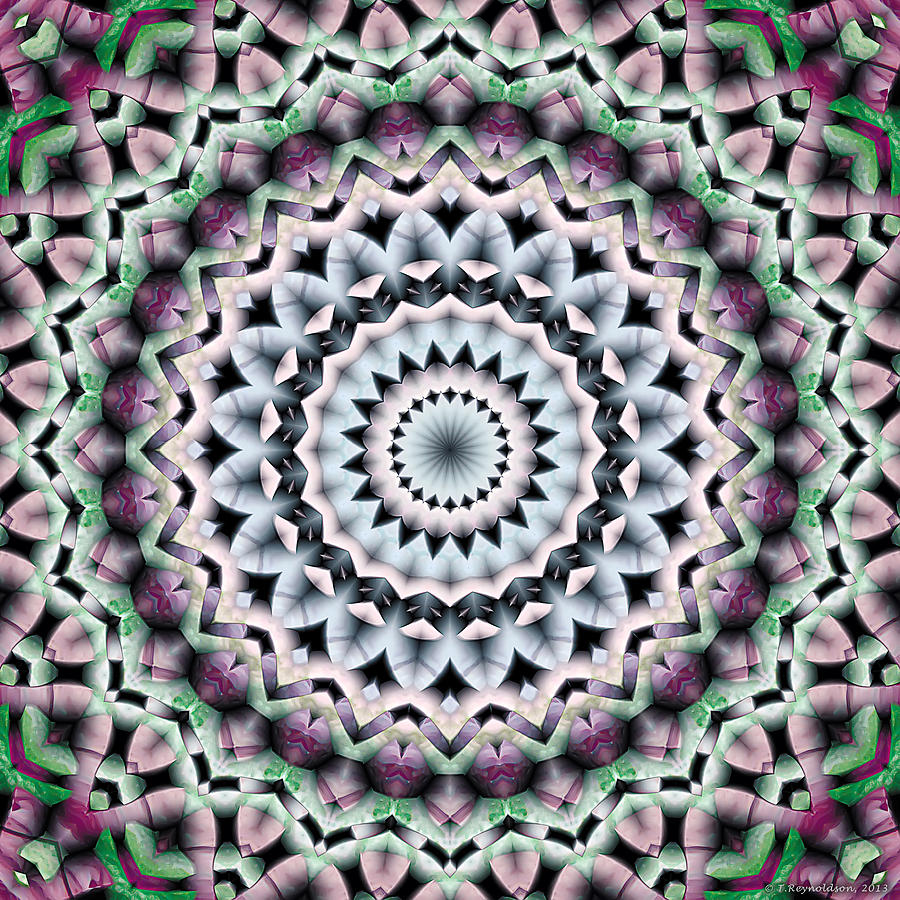 Psychedelic Pattern Digital Art - Mandala 40 by Terry Reynoldson