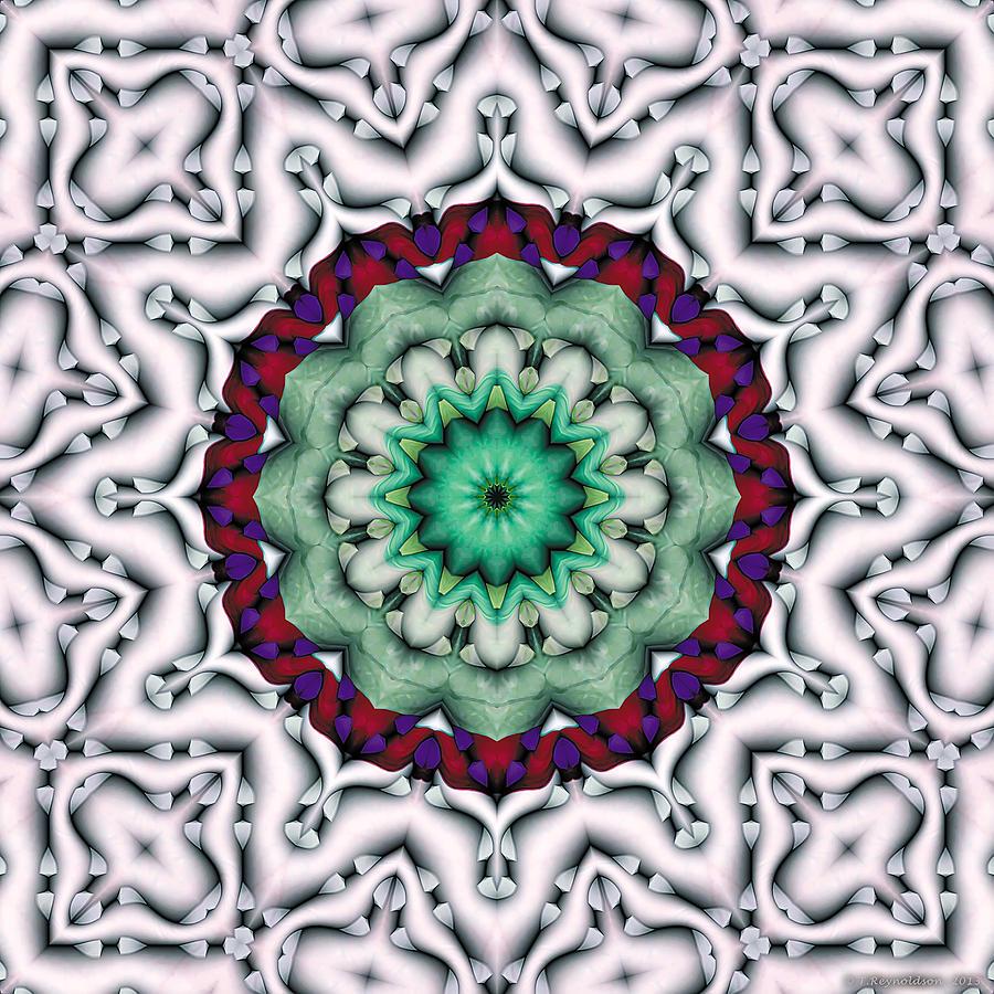 Sacred Geometry Digital Art - Mandala 8 by Terry Reynoldson