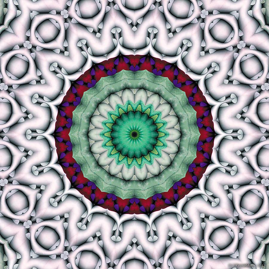 Kaleidoscope Patterns Digital Art - Mandala 9 by Terry Reynoldson