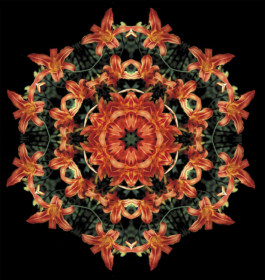 Mandala Photograph - Mandala Daylily by Nancy Griswold