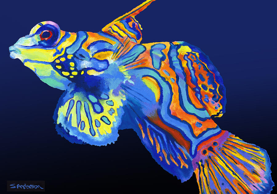 Mandarin Fish Painting By Stephen Anderson
