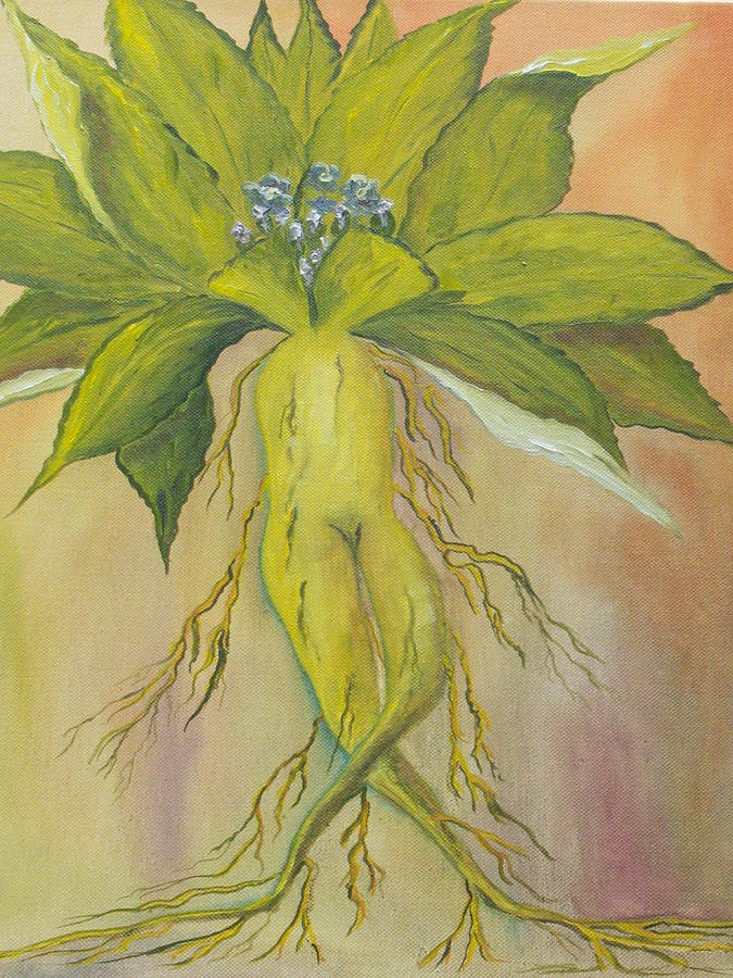 Ireland Painting - Mandrake by Conor Murphy