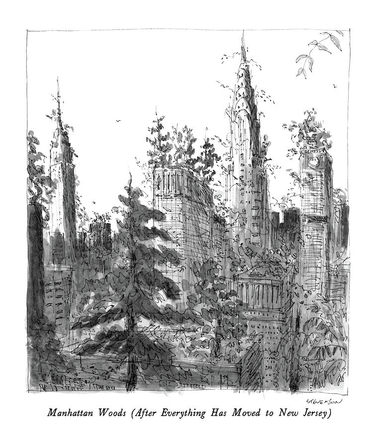 Cities Drawing - Manhattan Woods by James Stevenson