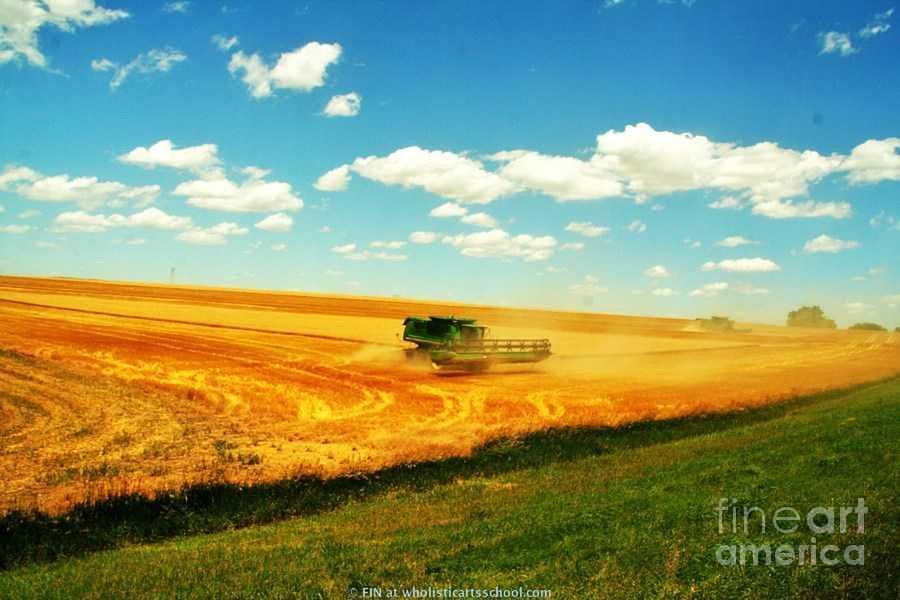 Midwest Harvesting Art Prints Photograph - Mankato Nebraska Wheat Harvest by PainterArtist FIN