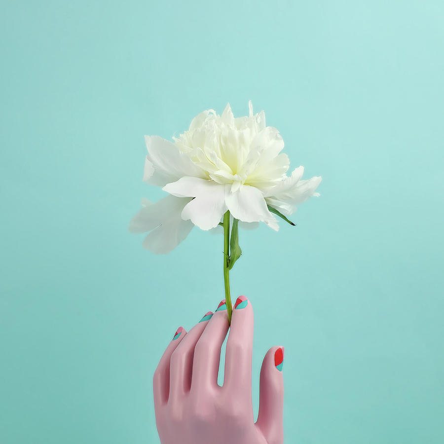 Mannequin Hand Holding White Peony Photograph by Juj Winn