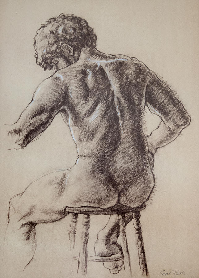 Figurative Drawing - Mans Back by Sarah Parks