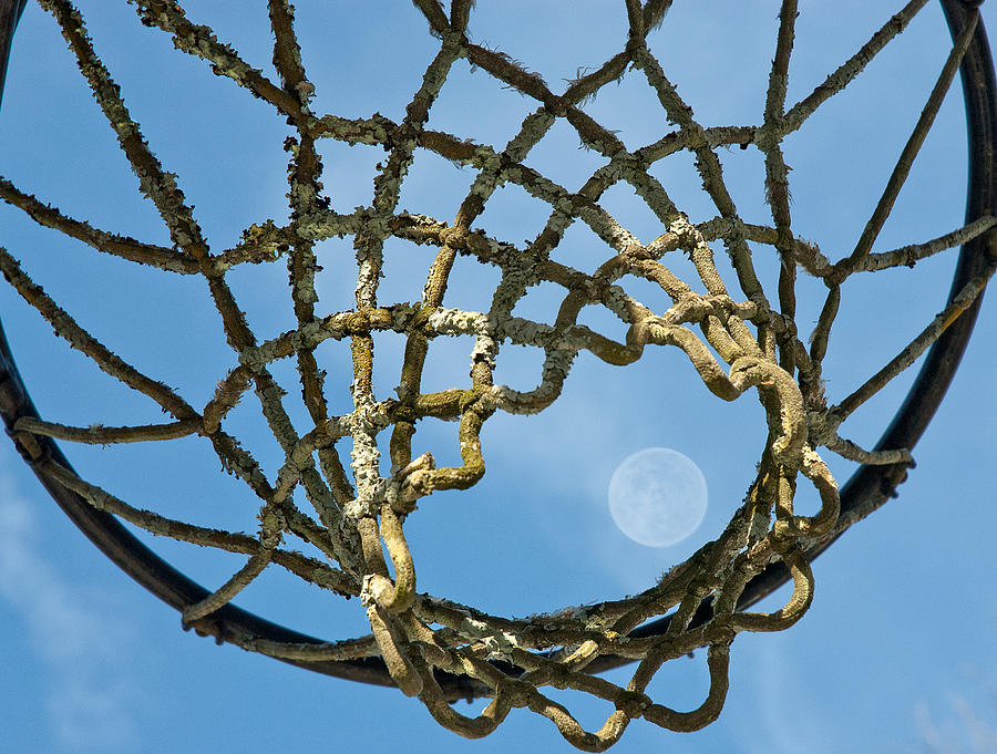 Blue Sky Digital Art - Many Baskets Made Many Moons Ago by Lena Wilhite