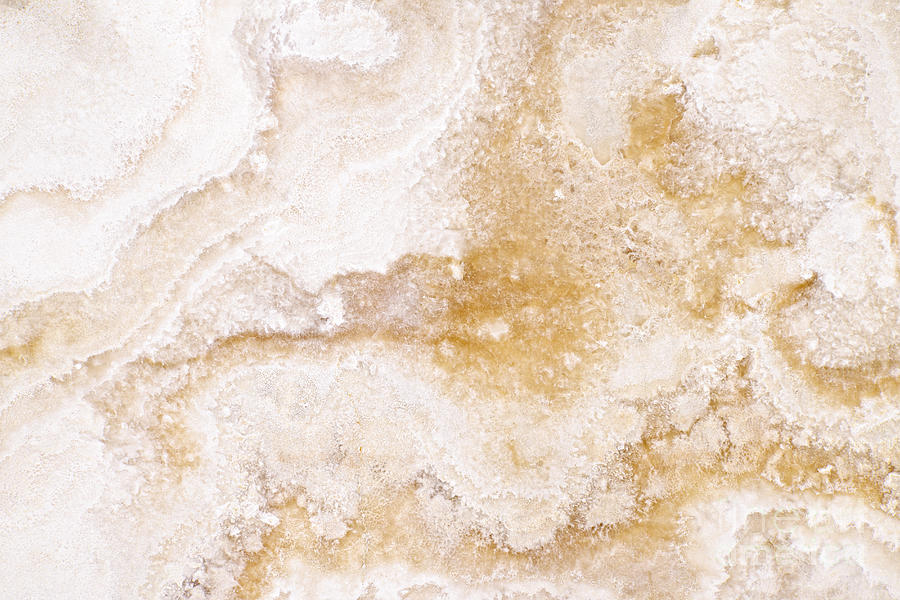 Marble Photograph - Marble by Elena Elisseeva