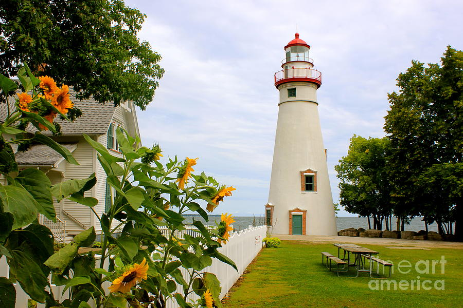 Marblehead Lighthouse by The Art of Alice Terrill