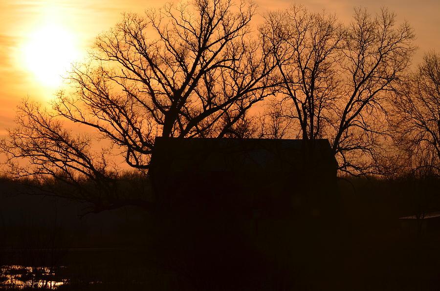 Sunrise Photograph - March Sunrise5 by Jennifer  King