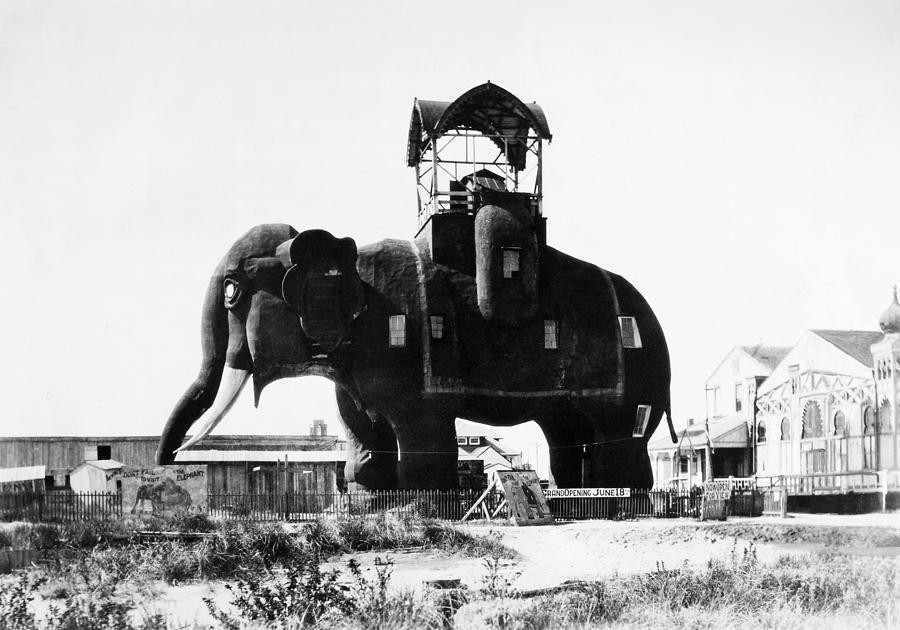 1890 Photograph - Margate Elephant, C1900 by Granger