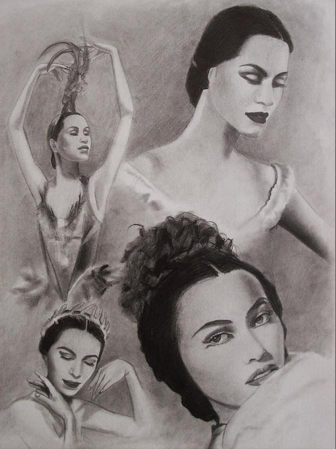 Ballerina Drawing - Maria Tallchief by Amber Stanford